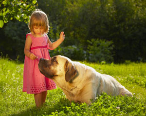 Young girl petting large dog in a field