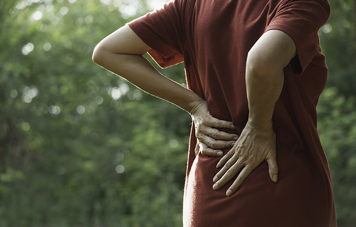 Getting to the Root of Back Pain