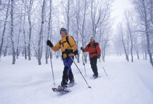 two people snowshoeing